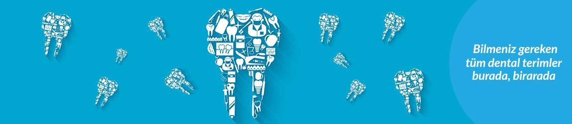 Dental Sözlük